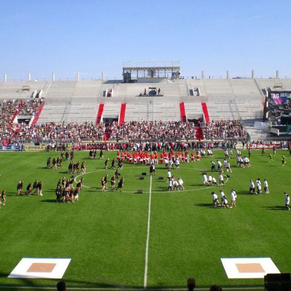 Tag der Legenden 2012 - Choreographie Stadionshow Pic4